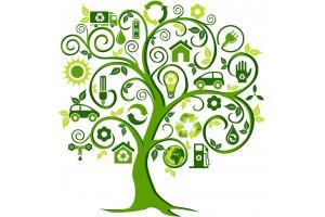 Mais investimento na bioeconomia