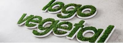 logo vegetak