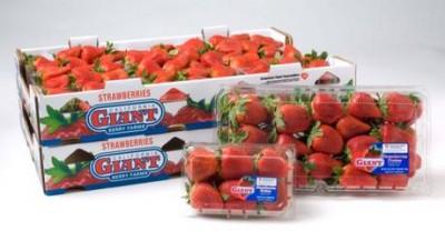 strawberries package